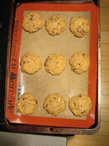 nutri cookies 3