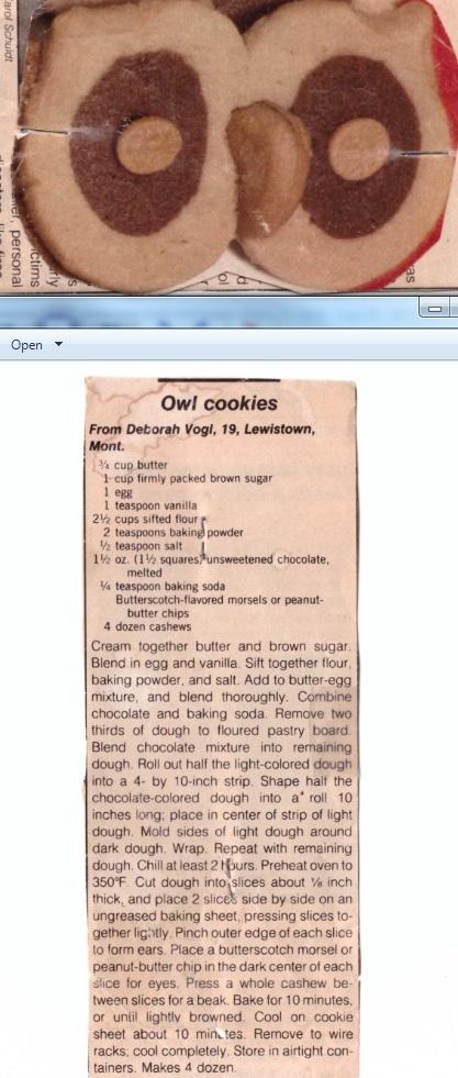 owl-cookies.jpg